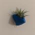 Angular succulent/air plant wall planter image