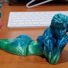 Picture of print of Mermaid - no supports! Esta impresión fue cargada por Colin Fielder