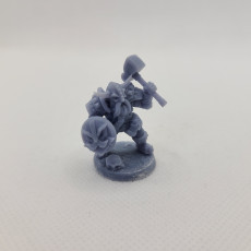 Picture of print of Dwarven Defender - B (Male) Modular