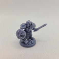 Picture of print of Dwarven Defender - C (Lady) Modular