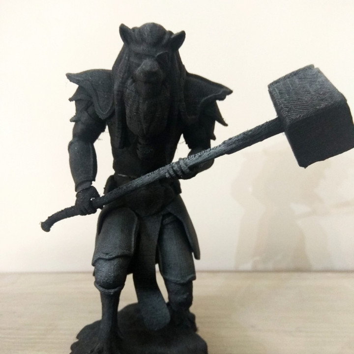 Lion Knight