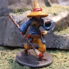 Picture of print of Human male mage for fantasy d&d