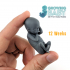 Week 12 Growing Baby 3D Print-ready Model image