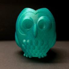 Owl Buddy