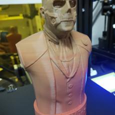 Picture of print of Die-Hardman Bust - Death Stranding