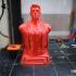 3D Printing Nerd - Joel Telling bust image