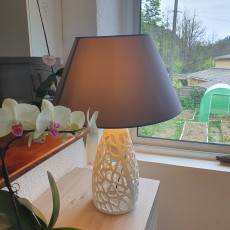 Picture of print of Cellular Planter / Lamp
