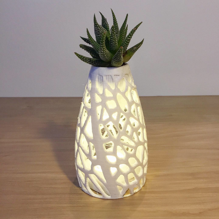 Cellular Planter / Lamp