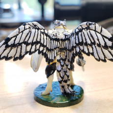 Picture of print of Aarakocra Knight