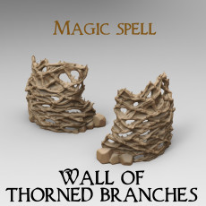 Magic Spell : Wall of Thorned branches