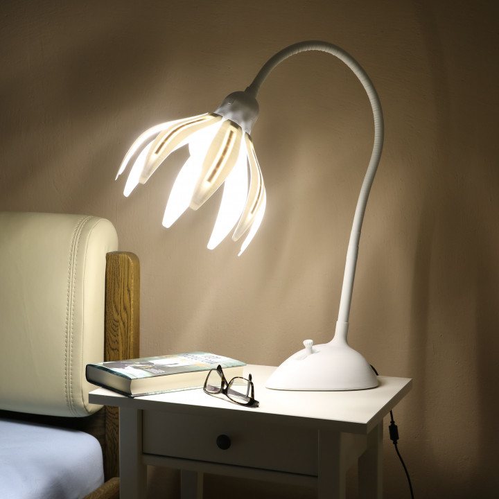 Flola - Design Lamp