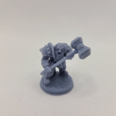 Picture of print of COMPLETE Dwarven Defenders (presupported)