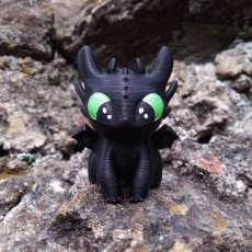 Picture of print of Toothless dragon_Night Fury