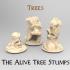 The Haunted Tree Stumps image