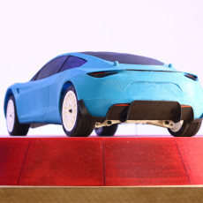 Picture of print of 2020 Tesla Roadster