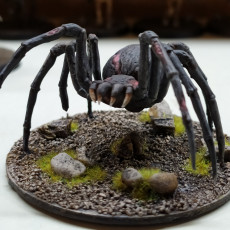 Picture of print of Undead Spider