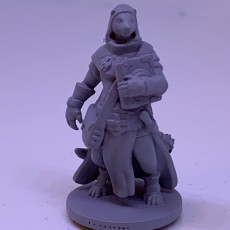 Picture of print of Ferret cleric