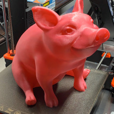 Picture of print of Piggy Sitting(Sir Pigglesfree): Single Extrusion Version