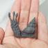 Flail Snail image