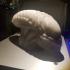 Alien Head print image