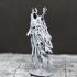 Wraith - Tabletop Miniature image