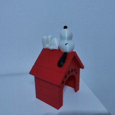 Picture of print of Snoopy - MMU