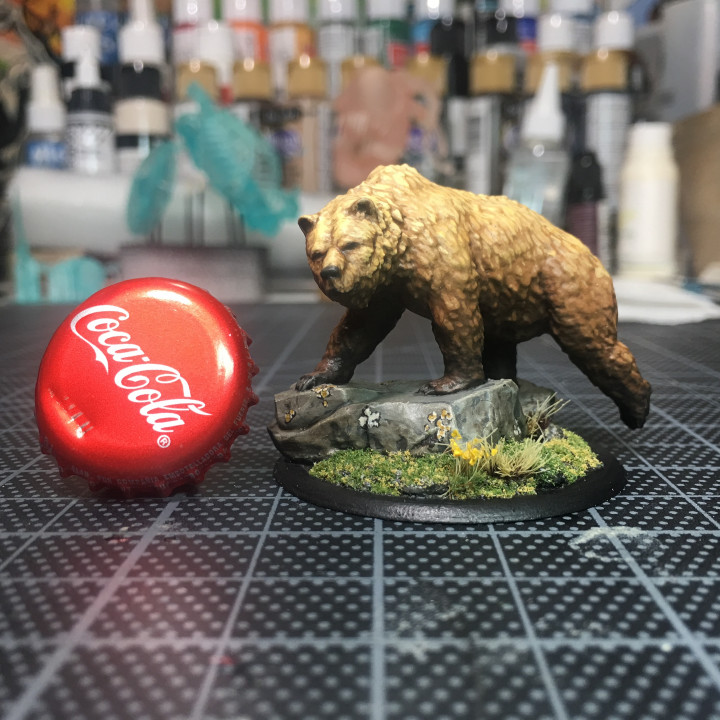 Grizzly 28mm