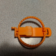 Picture of print of Mini Trap
