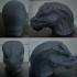 Lizard Head image