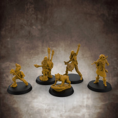 Bard Bundle (32mm scale miniatures)