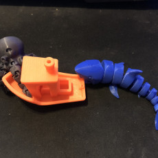 Picture of print of Cute Mini Octopus