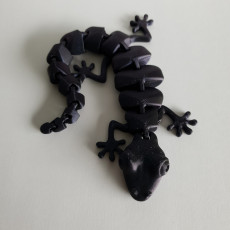 Picture of print of Articulated Lizard