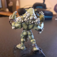 Picture of print of Troll - Tabletop Miniature