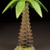 Tabletop plant: Palm Tree (01) image