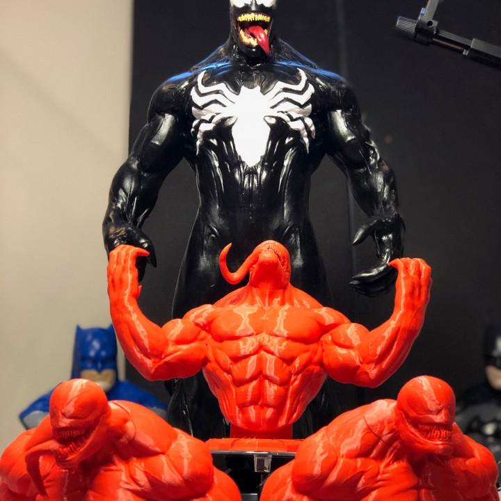 Venom collection