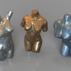 3 female bodies