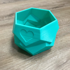 Picture of print of Polygon Planter