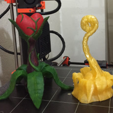 Picture of print of Tabletop plant: Fern Tentacle (11 Leaves)