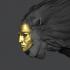 Golden masked Sphinx image