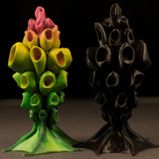 Tabletop plant:  HexaPlant  (Alien Vegetation 10)