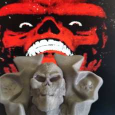 Picture of print of RED SKULL FAN ART