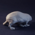 Molly the Monstrous Mole-Rat Tabletop Miniature (01) image