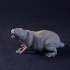 Morty the Monstrous Mole-Rat Tabletop Miniature (04) image