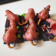 Picture of print of Monstrous Mole-Rat Tabletop Miniatures Bundle