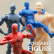 Articulated Poseable Male Figure
