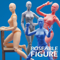 Articulated Poseable Female Figure