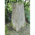 Ordnance Survey Trig Point S3147 at Lickey Hills image
