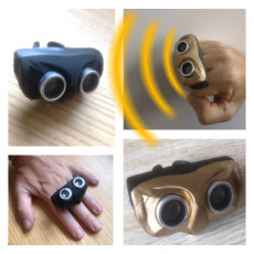 Owl ring (Assistant for sight-impaired people)