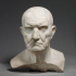 Marble bust of a man image