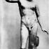 Hermaphrodite image